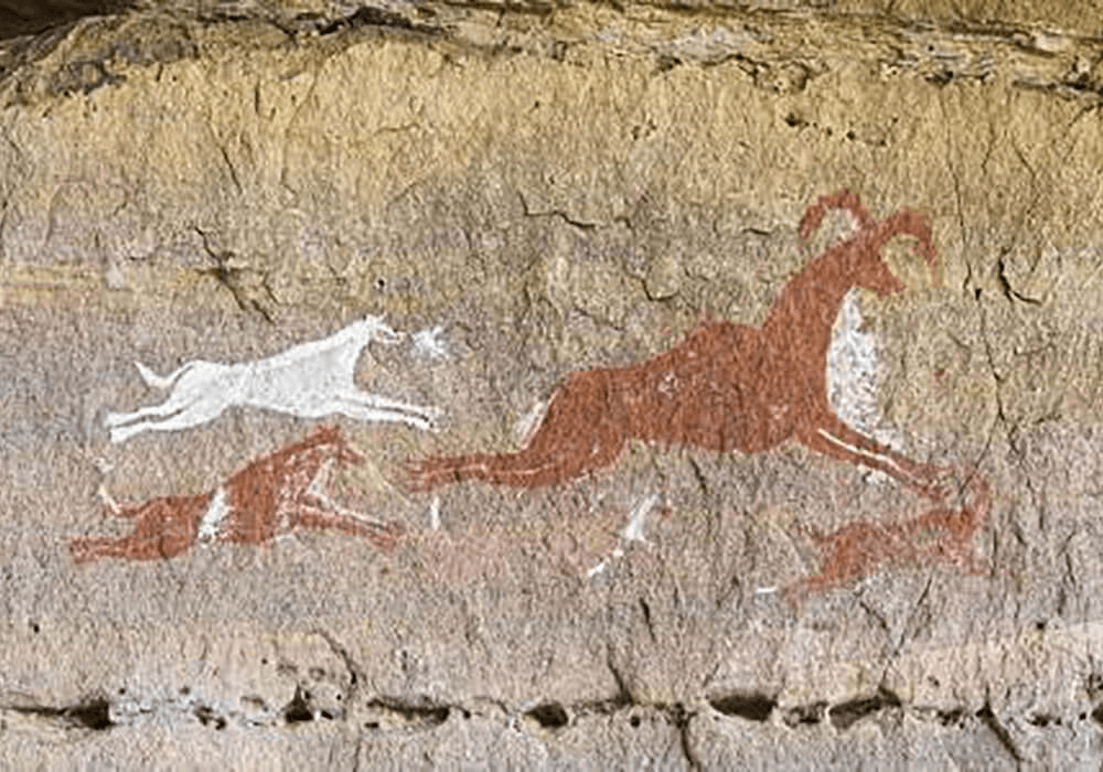 Peinture rupestre de chiens poursuivant une proie